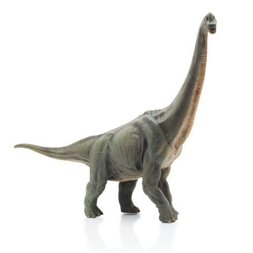 Brachiosaurus dinosaurie