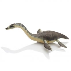 Plesiosaurus dinosaurie