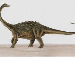 dinosaurie saltasaurus