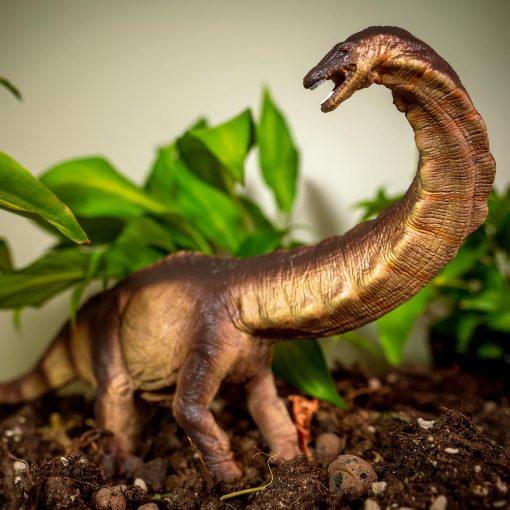 Apatosaurus dinosaurie